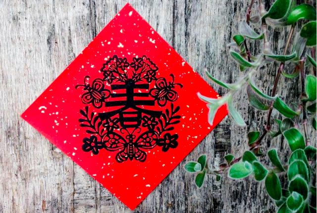 """Gong Xi Fa Cai!"": Celebrating Chinese New Year in Taiwan"