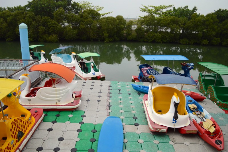Dapeng Pedal Boat